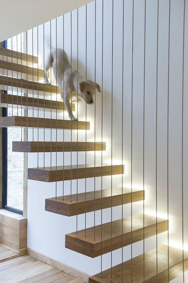 Cầu thang có thiết kế bóng đèn dưới chân