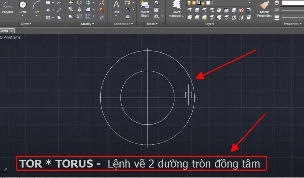 Lệnh TORUS lệnh vẽ 2 đường tròn đồng tâm